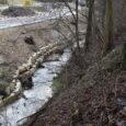 Ufersanierung Deponie alte Schutti